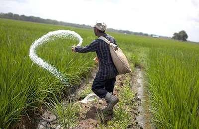 поливает растения