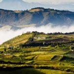 поля в Эквадоре