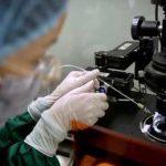 научные исследования генома