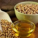 соя и соевое масло