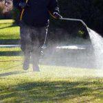 поливают зеленый газон гербицидом