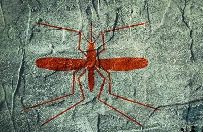 комар генный драйв