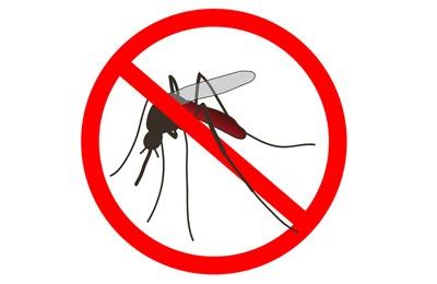 запрет комаров
