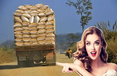 грузовик с рисом