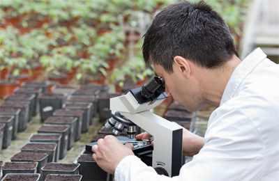 исследователь растений