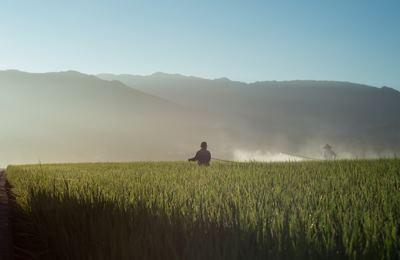 обработка полей гербецидом