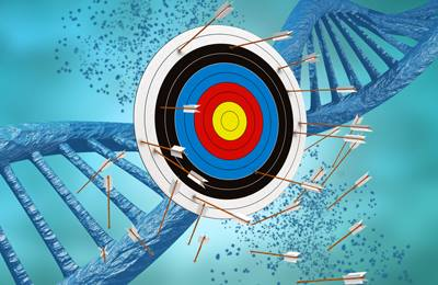 ДНК и попадание мимо цели