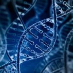 CRISPR против слепоты