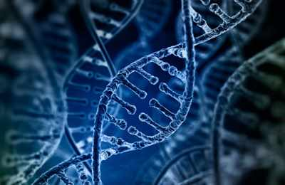 исследование CRISPR