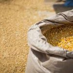 пакистанская кукуруза в мешке