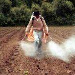 полив полей глифосатом