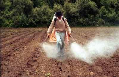 рабочие поливают глифосатом