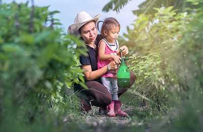 ребенок опрыскивает растения пестицидами