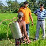 ученые из Шри-Ланки изучают глифосат