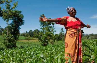 фермер из Мозамбика