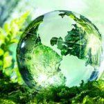 наша зеленая планета