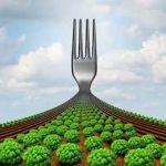 европейская стратегия по ферме