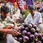 продажа баклажана в Индии