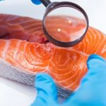 рассматривая лосось