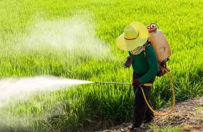 ферер распыляет пестицид на поле