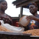 ГМО в Замбии