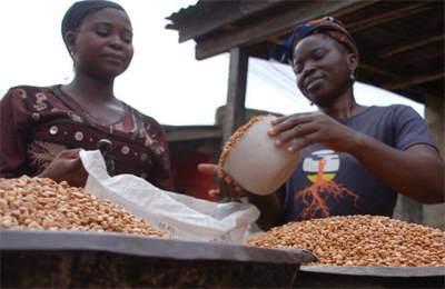 Замбия ГМО