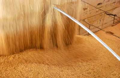 Китай ГМО соя