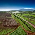 Monsanto farmland on Molokai