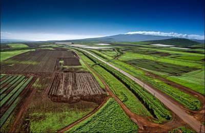 Монсанто на Гавайях