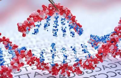 генетичски отредактированные продукты