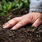 прикоснуться к почве