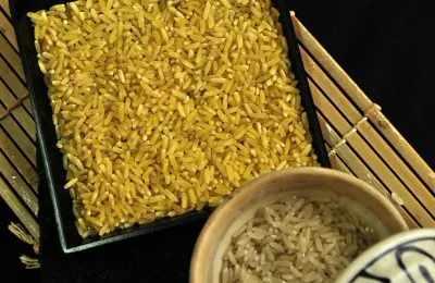 ГМО золотой рис