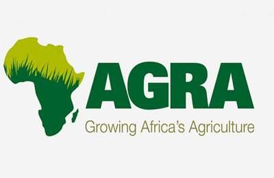 зеленая революция в Африке